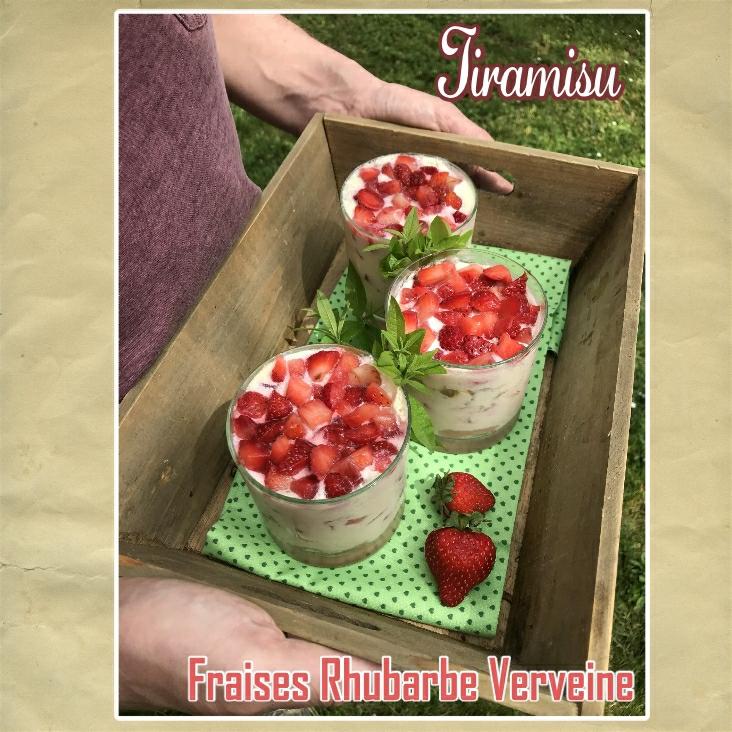 Tiramisu fraises rhubarbe verveine