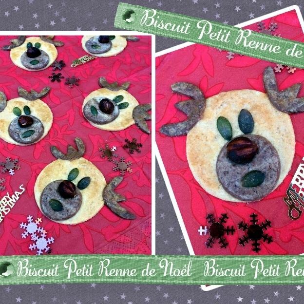 biscuit petit reine de Noel (scrap)