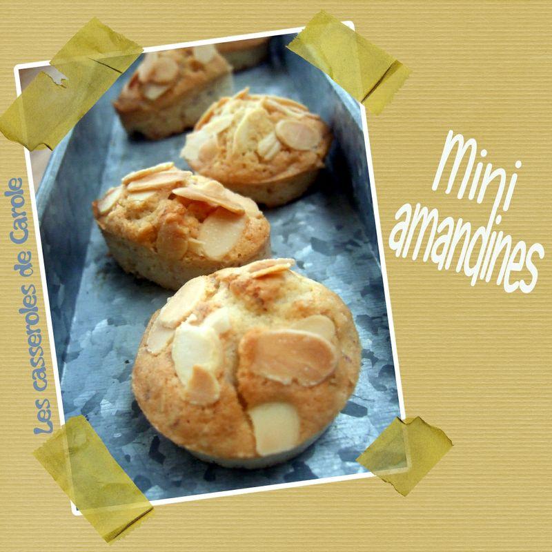 mini amandines